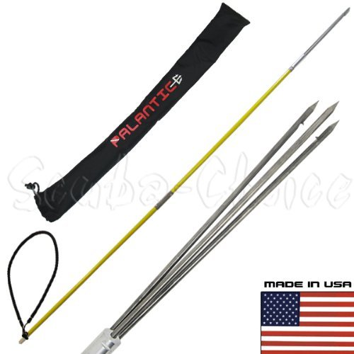 best pole spear for beginner